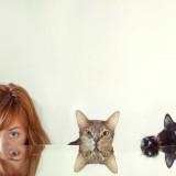 Mascotastudio, fotografía de mascotas