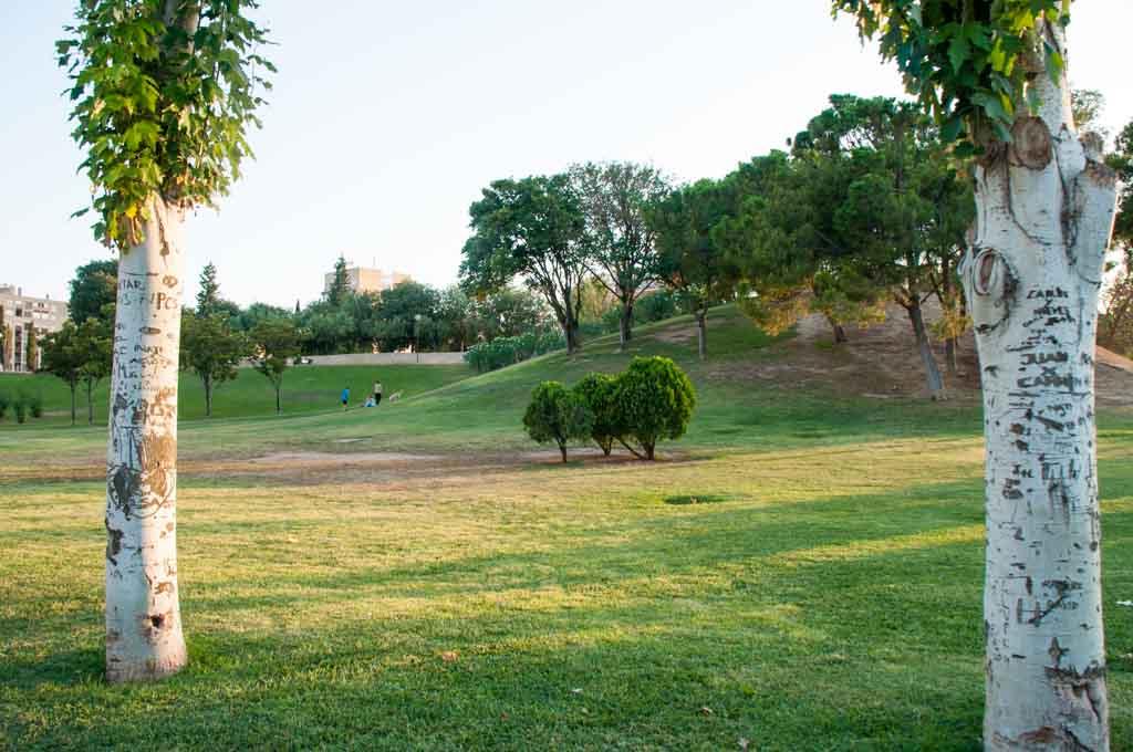 El gran desconocido Parque de la Aljafería