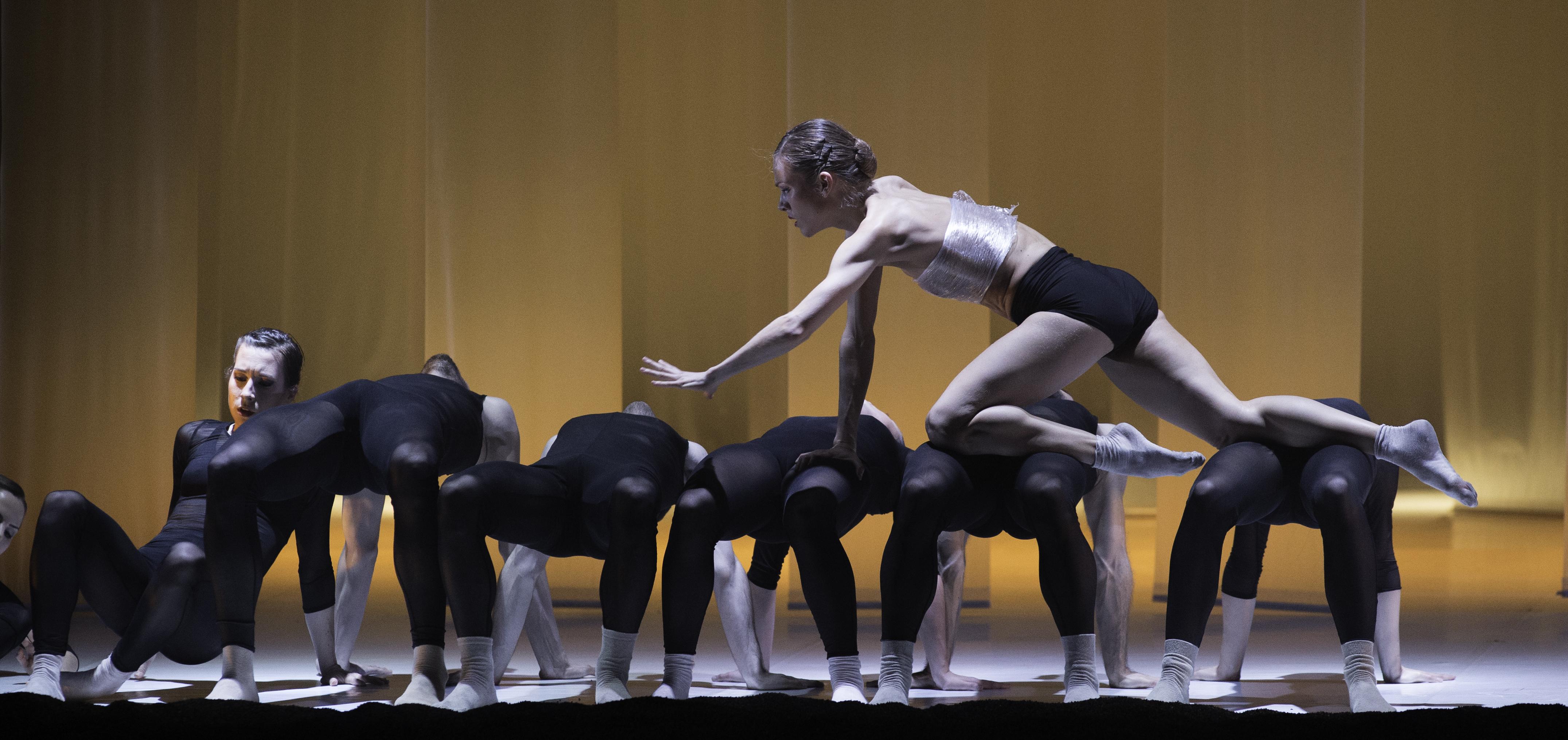 Espías por un día en la compañía de danza LaMov
