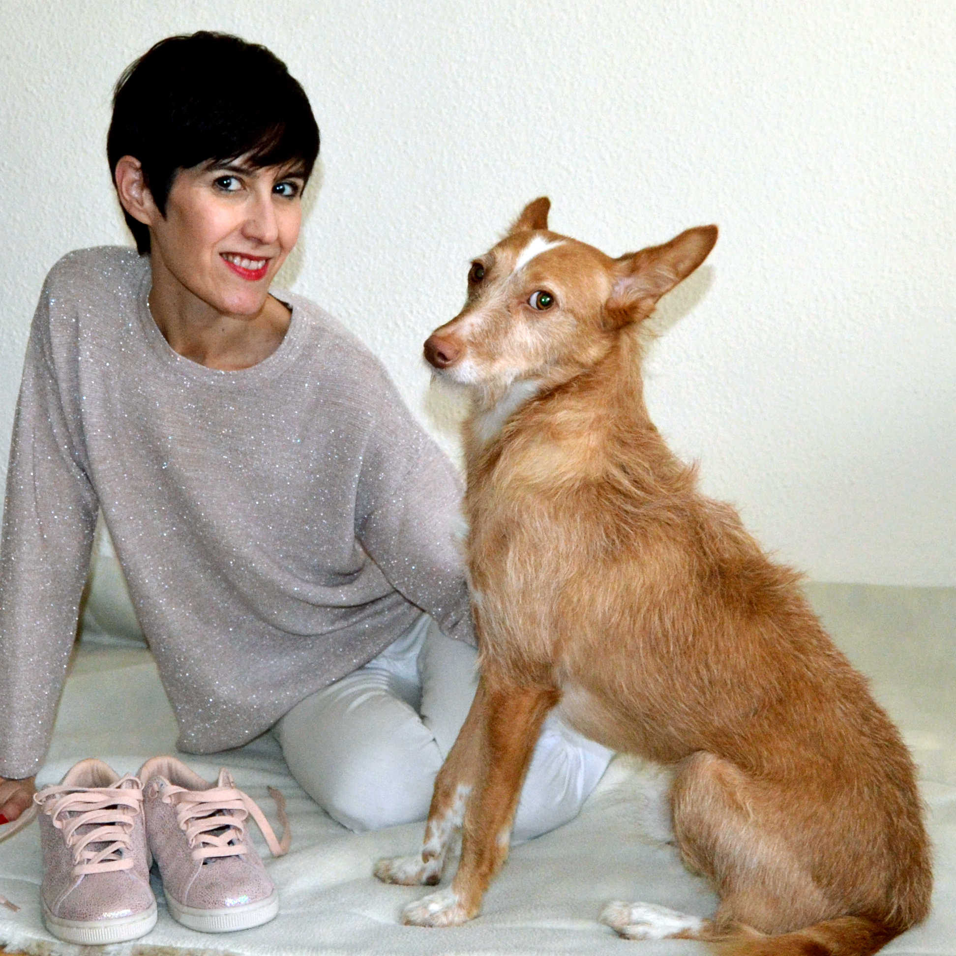 Adala, protectora de animales. No compres, adopta.
