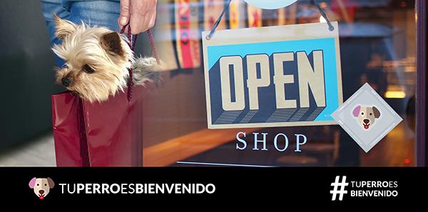 Tu perro es bienvenido en el comercio, hablamos con Silvia Porras