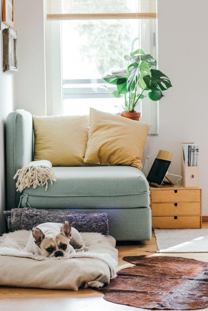 Cómo decorar tu hogar